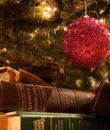 Sondaggio: Quale sorpresa vorreste trovare sotto l'albero?