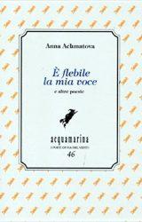 È flebile la mia voce | Anna Achmatova