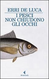 copertina - I pesci non chiudono gli occhi di Erri De Luca