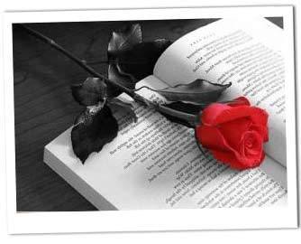 Rose e Libri per San Giorgio