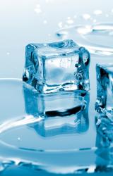 Capolino dal freezer…