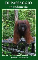 Di passaggio in Indonesia di Simona Colombo: un diario d'avventura