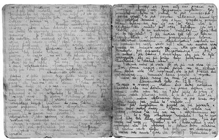 Due pagine originali del diario