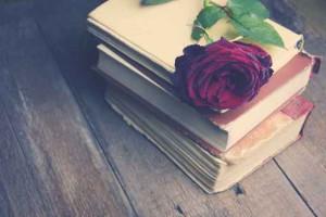 Rosa e Libri