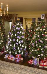 Sondaggio: Quali libri leggere sotto l'albero?