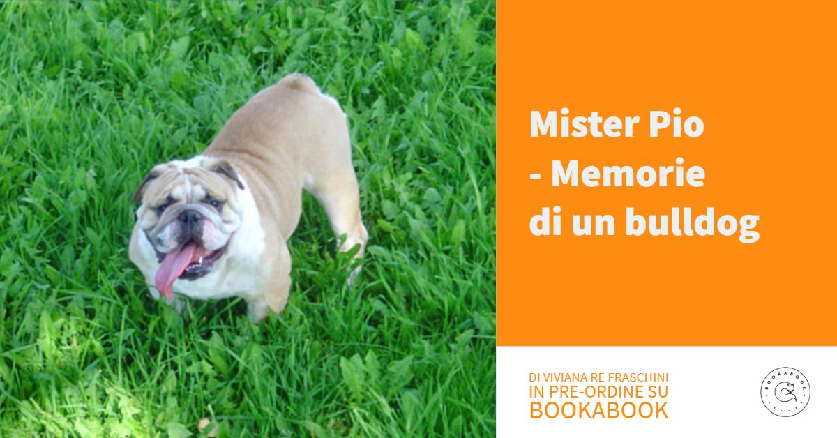 Mister Pio